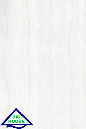 GẠCH ỐP TƯỜNG ĐỒNG TÂM 30×45 3045ONIX005