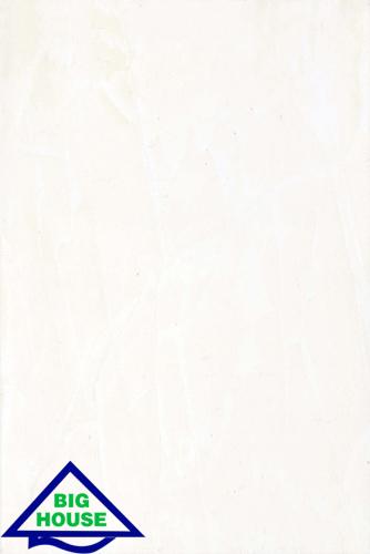 GẠCH ỐP TƯỜNG ĐỒNG TÂM 30×45 3045PHALE001
