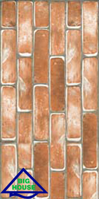 Gạch ốp tường Đồng Tâm 30×60 3060THANHHA001