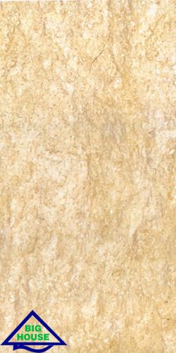 Gạch ốp tường Đồng Tâm 30×60 3060fossil001