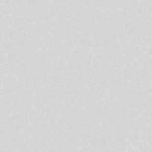 GẠCH LÁT NỀN ĐỒNG TÂM 60×60 6060WS013