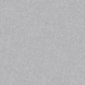 GẠCH LÁT NỀN ĐỒNG TÂM 60×60 6060WS014