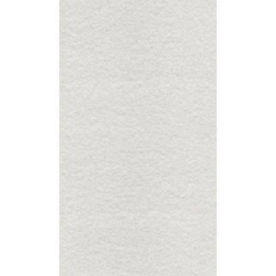 Gạch Taicera 30×60 G63525