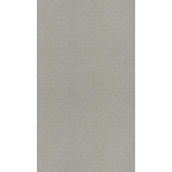 Gạch Taicera 30×60 G63548
