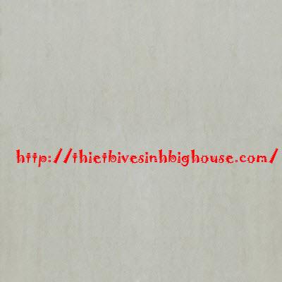 GẠCH LÁT NỀN CAO CẤP TAICERA 60x60/MÃ G68938
