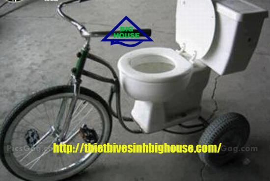 Bệt vệ sinh Toto cao cấp di động