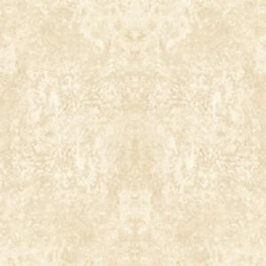 GẠCH LÁT NỀN ĐỒNG TÂM 60×60 6060CLASSIC007