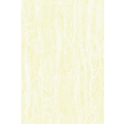 GẠCH ỐP TƯỜNG ĐỒNG TÂM 30×45 3045NONNUOC001