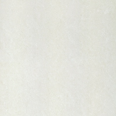 Gạch lát nền Taicera 100×100 P10702N