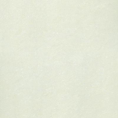 Gạch lát nền Taicera 100×100 P10703N