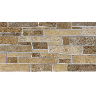 Gạch ốp tường Viglacera 30×60 GW3601