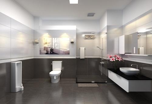 mẫu gạch lát nền nhà tắm đẹp