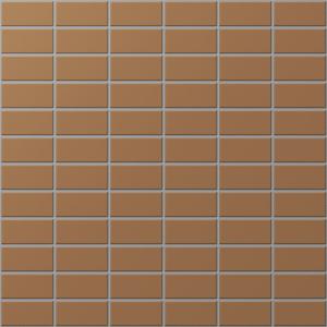 Gạch INAX-255/DPL-102V