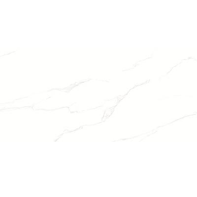 Gạch ốp tường TASA 40×80 4803