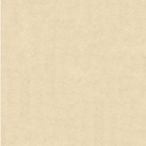 Gạch Bạch Mã 60×60 MN60001