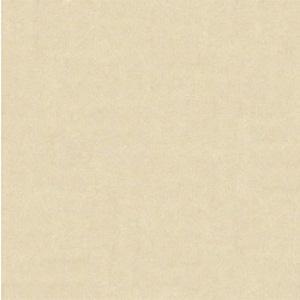 Gạch Bạch Mã 60×60 MN60002