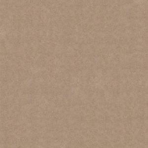 Gạch Bạch Mã 60×60 MN60004