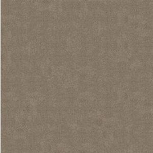 Gạch Bạch Mã 60×60 MN60005