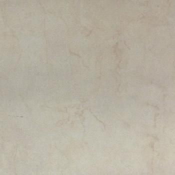 Gạch lát nền Đồng Tâm 50×50 NEWCASTLE