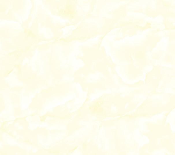 Gạch lát nền TASA 50×50 5203