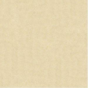 Gạch lát nền Bạch Mã 60×60 MM6001