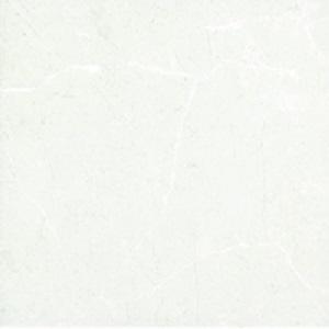 Gạch lát nền Đồng Tâm 25×25 2525PHUSY001