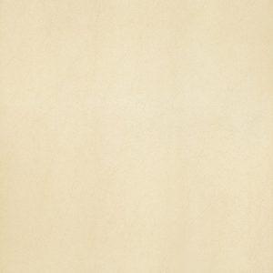 Gạch lát nền Taicera 60×60 G68913