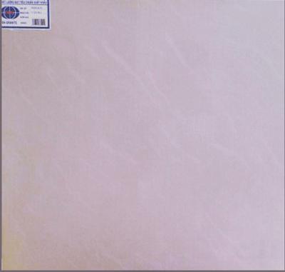 Gạch SPG Vân Đá P69142N 60X60