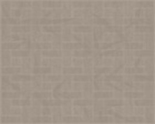 GẠCH LÁT NỀN VỆ SINH OREGON GR 2525*