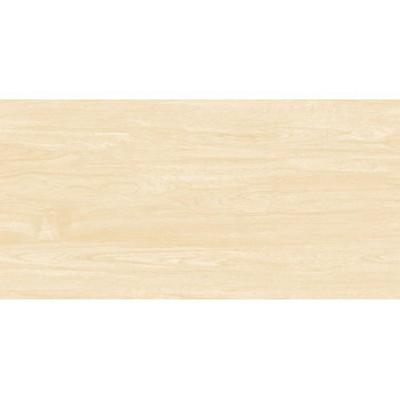 Gạch KIS 50×100 – K105002B