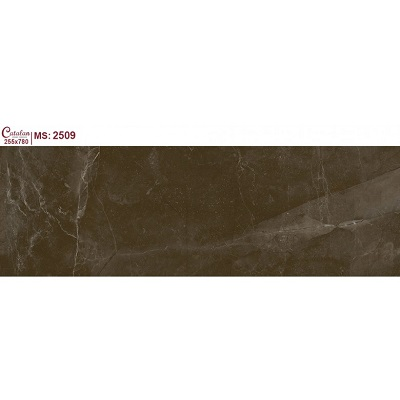 Gạch ốp tường Catalan 255x780mm 2509